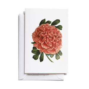Fancy Greeting Cards Printing Brooklyn