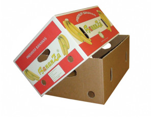 Fruit Corrugate Box